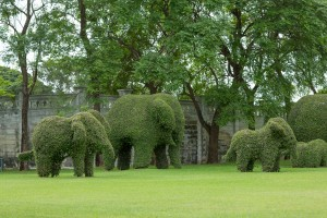 Bending elephant trees